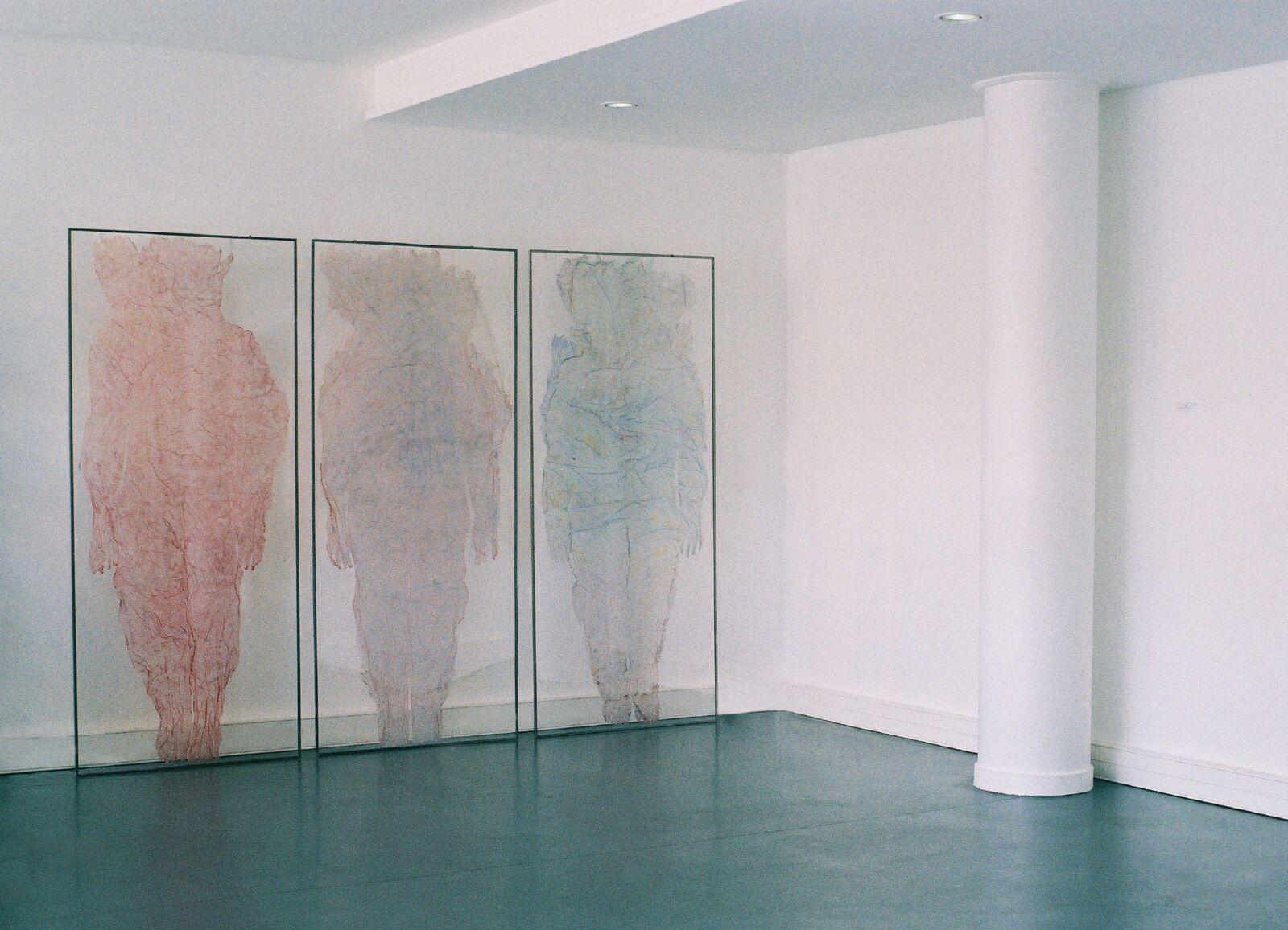 Valérie Novello - Peaux sous verre