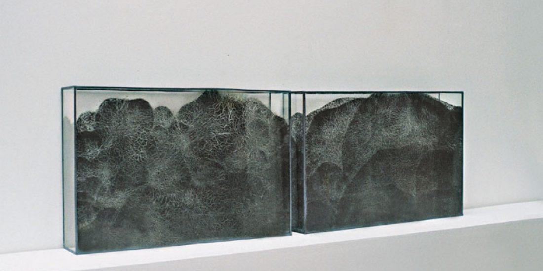 Valérie Novello - Paysage de cendre